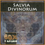 Salvia divinorum portada extracto 60x 3gr
