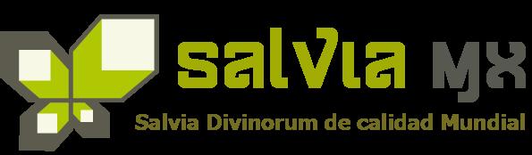 Salvia Divinorum Tienda en linea